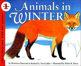 winter animals in winter