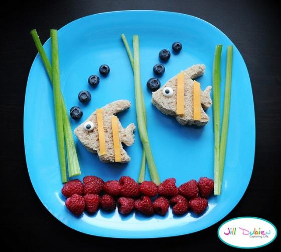 food swimming fish