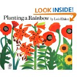 rainbow planting