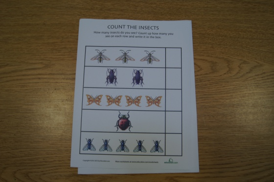 I discovered this website: www.education.com.  For free, you can download up to ten worksheets a month.  If you pay more, you can download more.  I found this one with realistic pictures of insects where the kids need to count them and write the number at the end of the row.