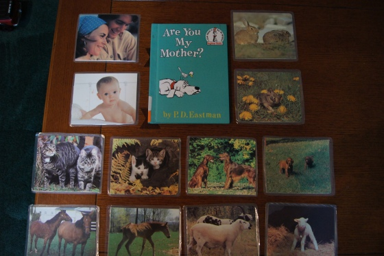 I found these pictures at a garage sale.  They have pairs of parents with babies.  I paired it with Are You My Mother.  The kids had to find the correct pairs.