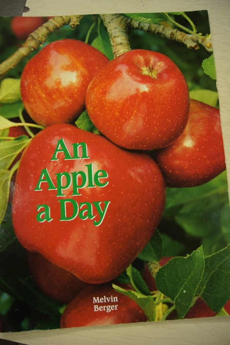 """First, we read this """"big book"""" called An Apple a Day.  It is a great book all about apples.  It shows the life cycle of an apple tree and it shows what an apple tree looks like at different times of the year.  It also talks about how apples are harvested and what you can make with them."""