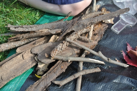 Next we sorted all of the findings.  We made a pile of sticks and bark.