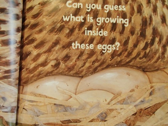 This is a perfect book for learning about eggs!  The book alternates between a picture of an egg with a few clues as to what animal grows inside the egg....
