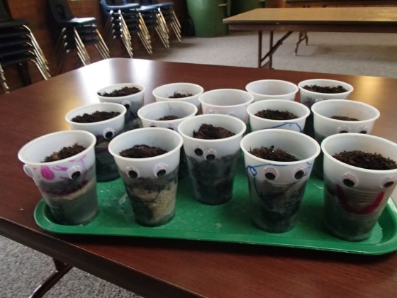"A week later, the seeds did not appear to grow.  The children were not disappointed because they said ""you told us it would take a LONG time.""  I thought that was really cute."